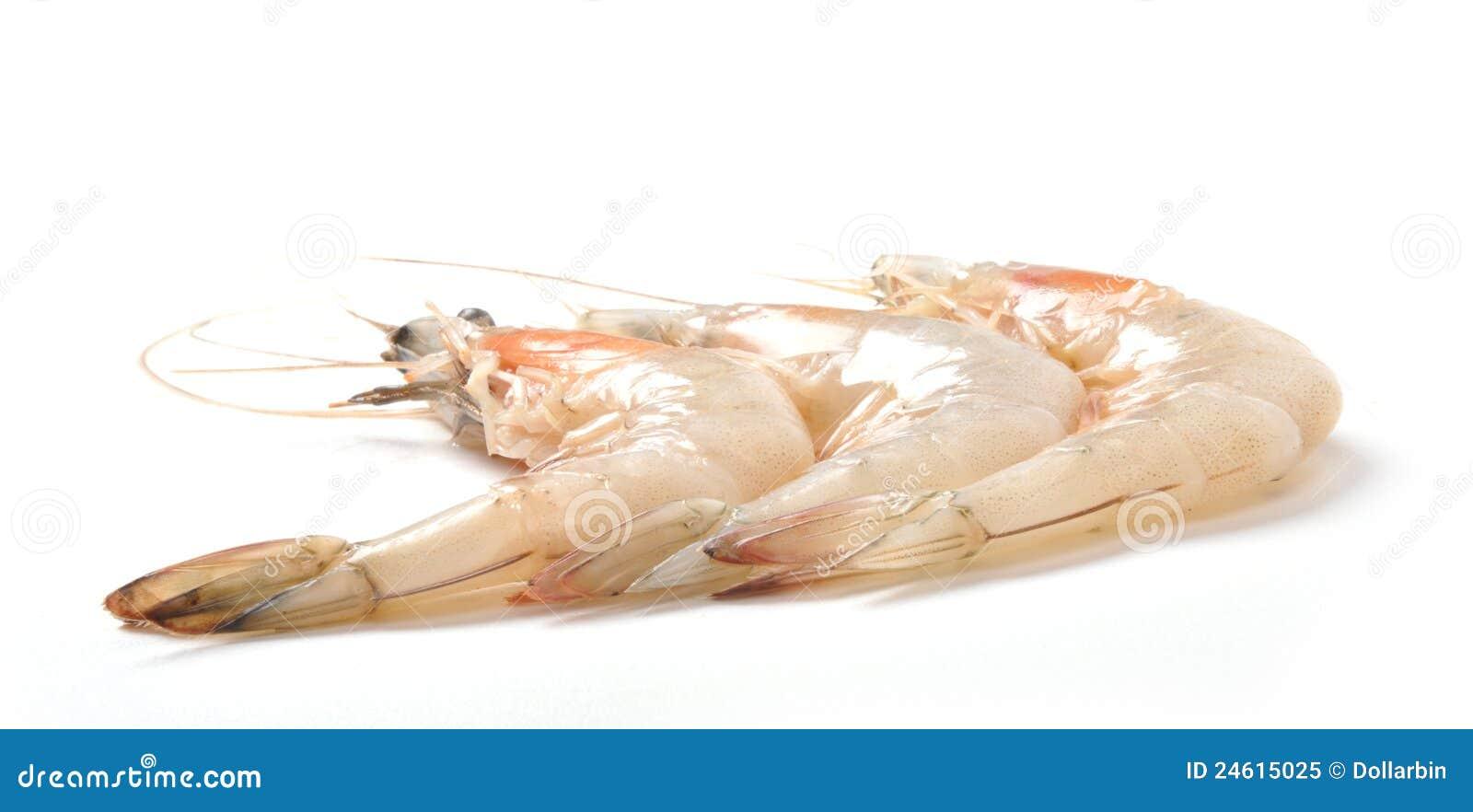 Shrimp Royalty Free Stock Photo - Image: 24615025