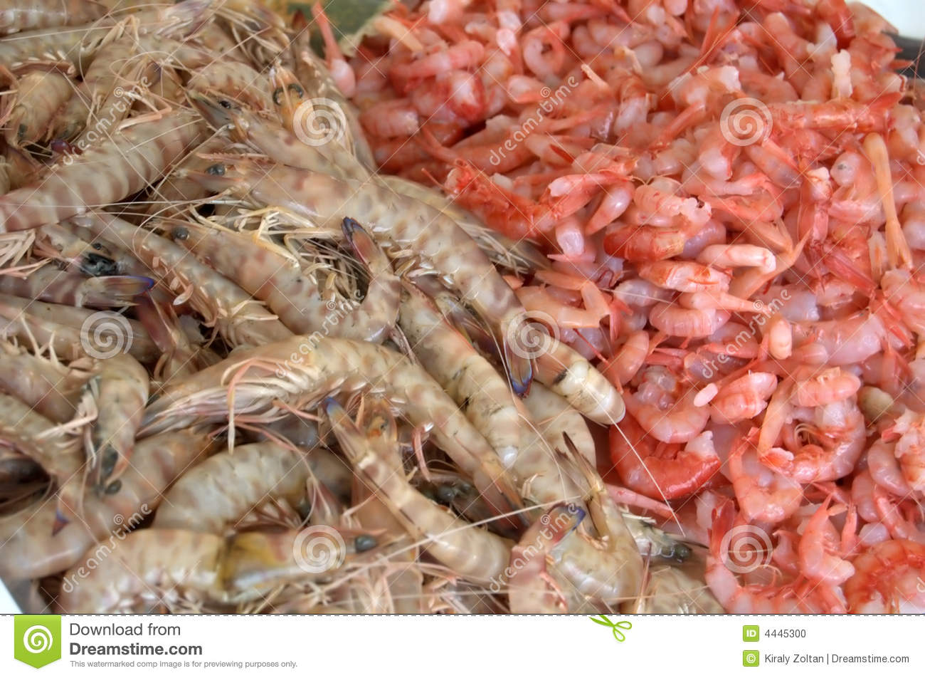 Shrimp And Prawns At Market Stock Photo Image Of Whole Shrimp
