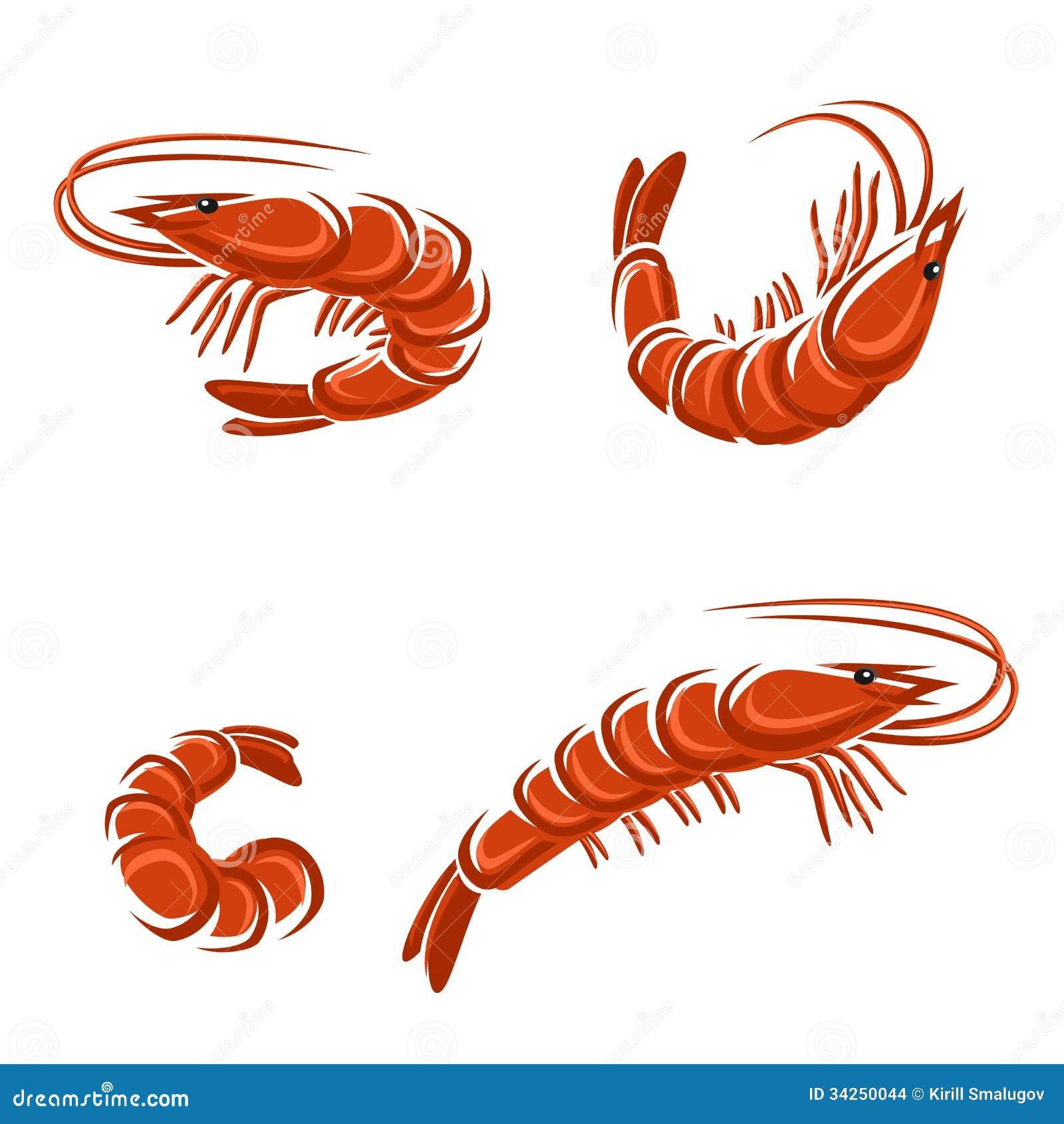 Shrimp Set Vector Illustration This Is File Of EPS8 Format