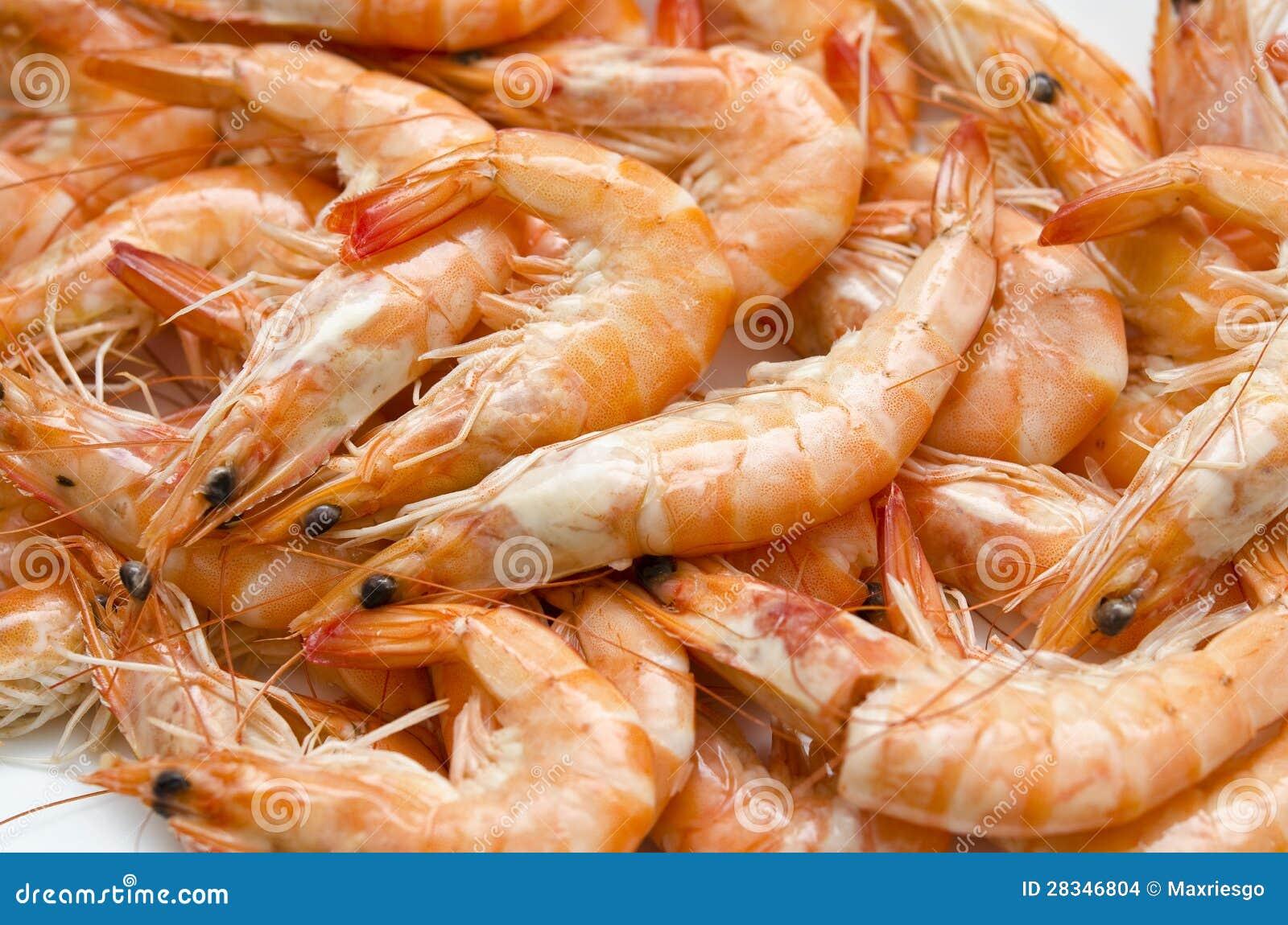 Shrimp Texture Stock Images - Image: 28346804