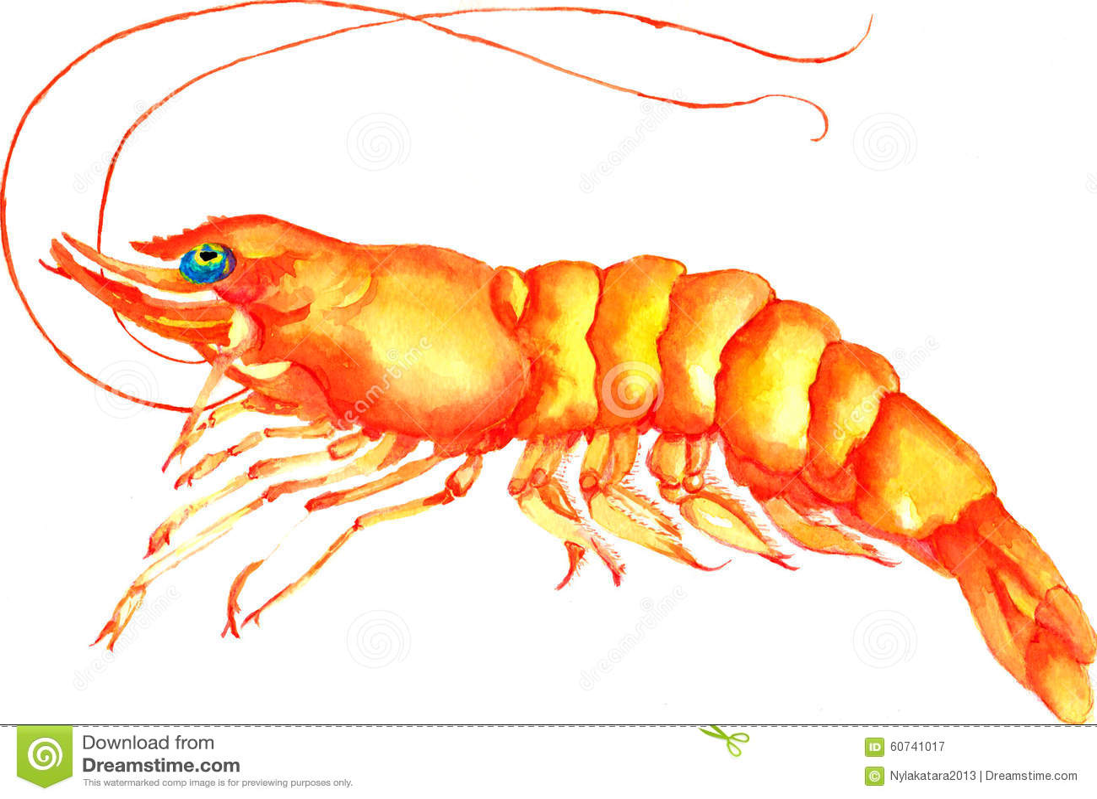 Shrimp Stock Illustration - Image: 60741017