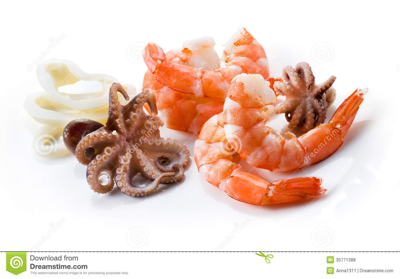 Shrimps, Octopus; And Squid. Seafood Isolated Royalty Free ...