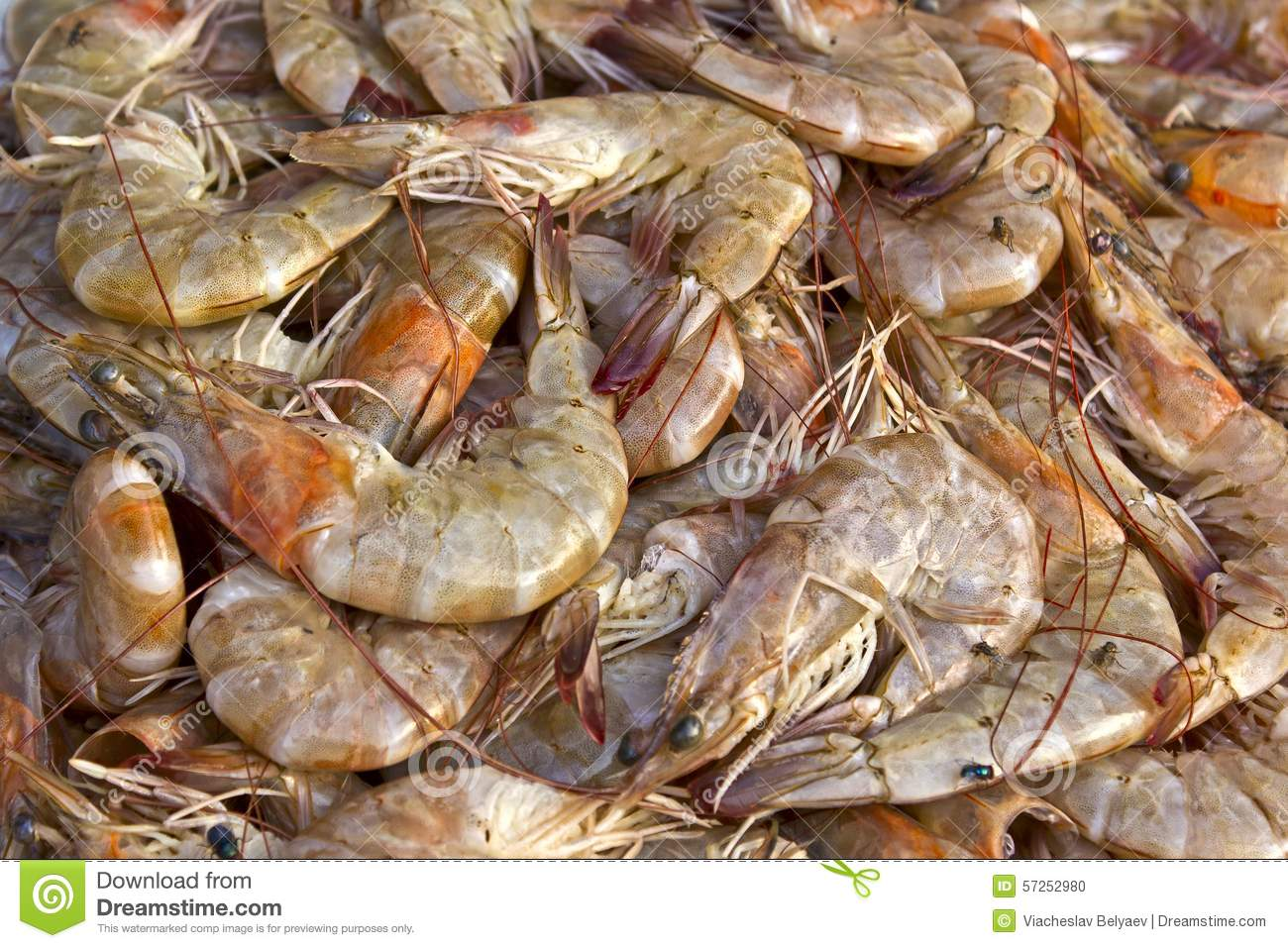 Raw shrimps for sale on the market in Tirupati, India.