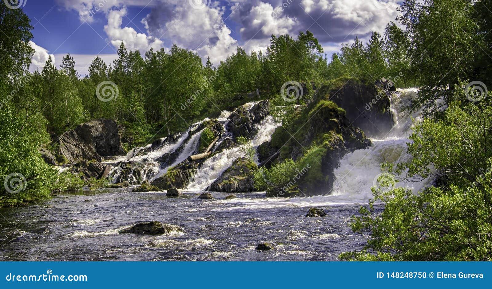 Shuonijoki-F?lle Bewegungsunsch?rfe-Wasserfall-Natur-Landschaft in Nikel, Murmansk-Region, Russland ?ppige gr?ne B?ume, Felsen un