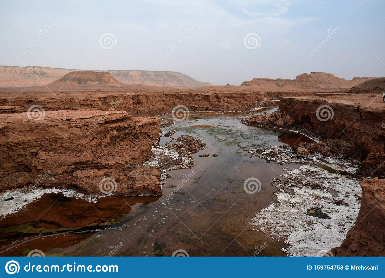 Shur River In Lut Desert Of Iran Stock Image Image Of Iran Settling 159754753