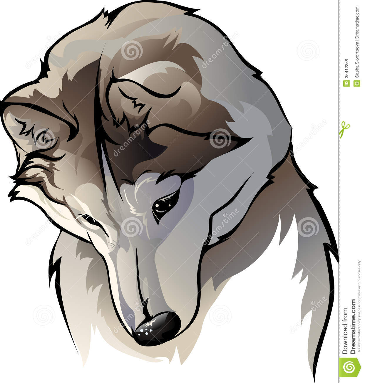 Shy Wolf Royalty Free Stock Photos - Image: 35412358