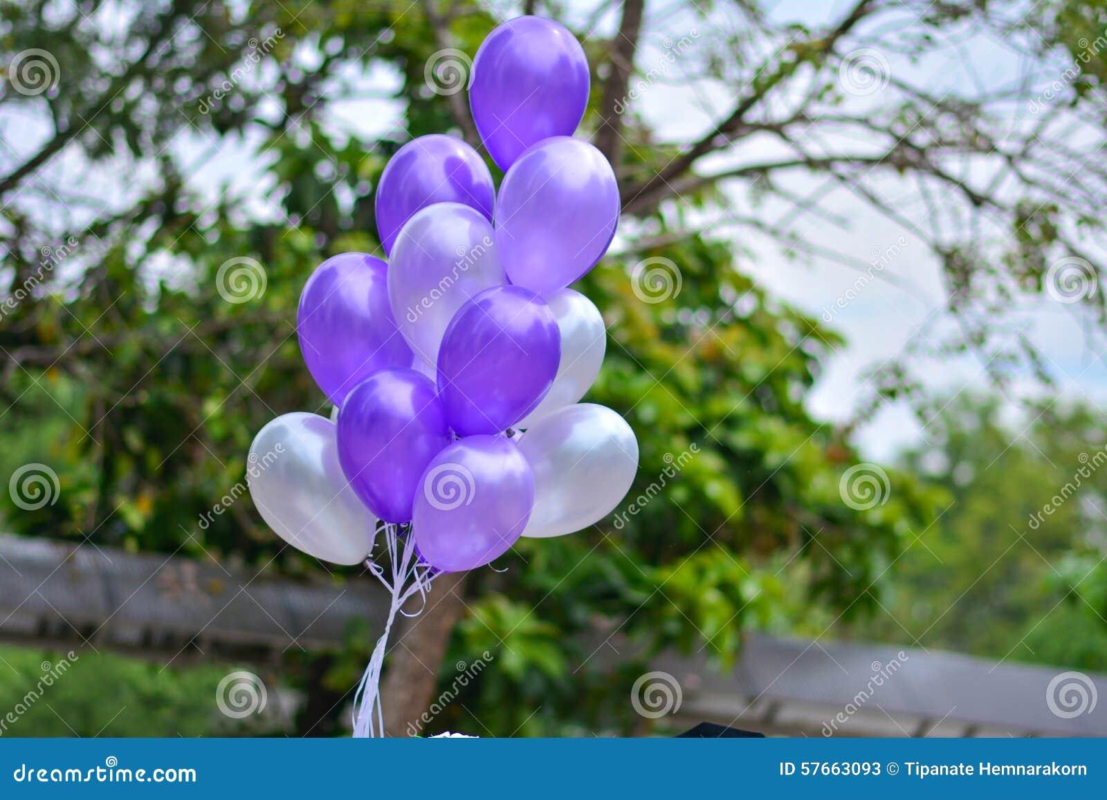Się purpurowy
