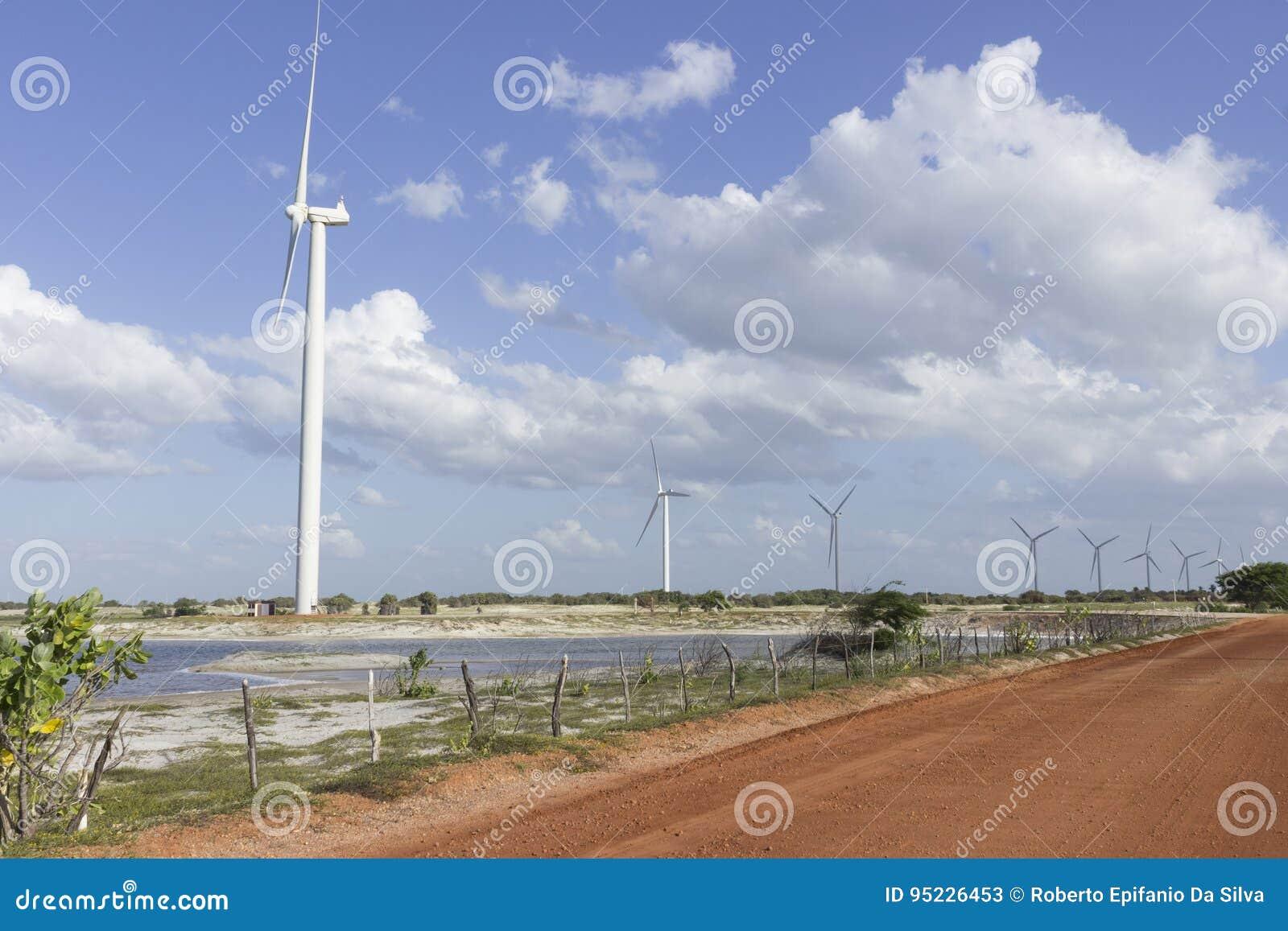 Siła wiatru w rio grande robi Norte, Brazylia