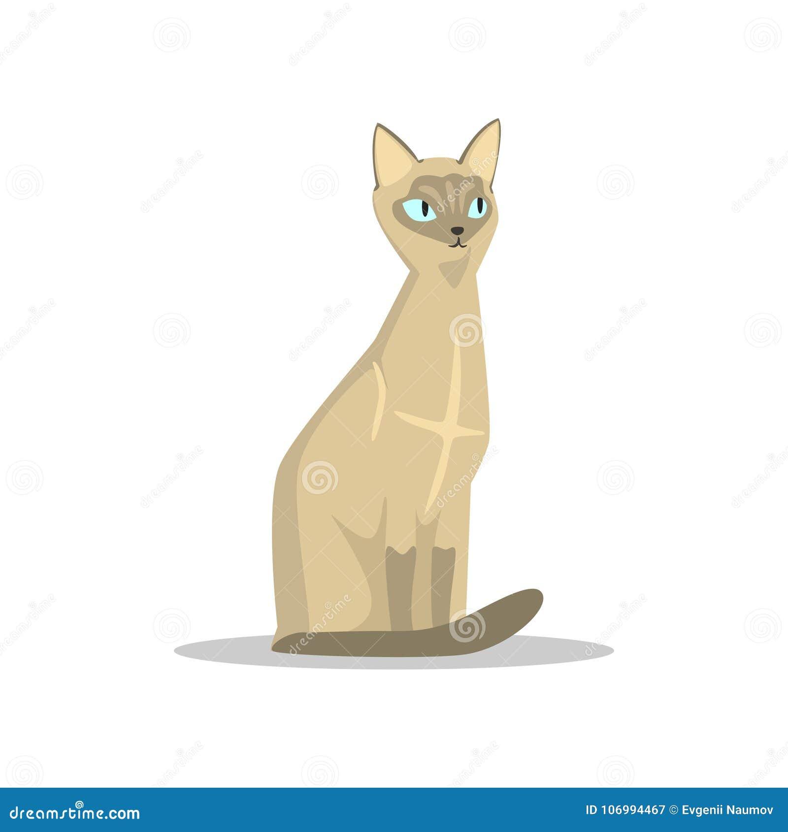 Siamesische Katze Der Karikatur Mit Blauen Augen Den Großen