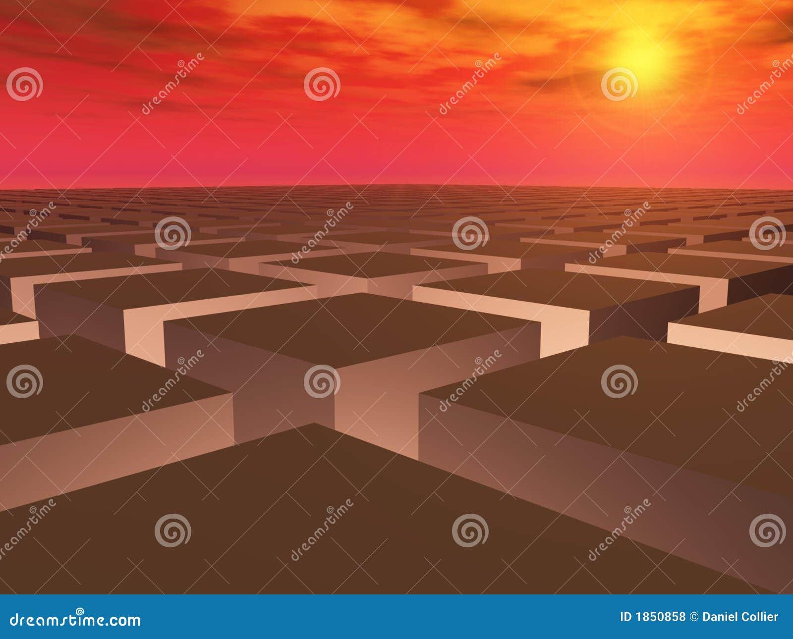 Siatka pola nad zachodem słońca
