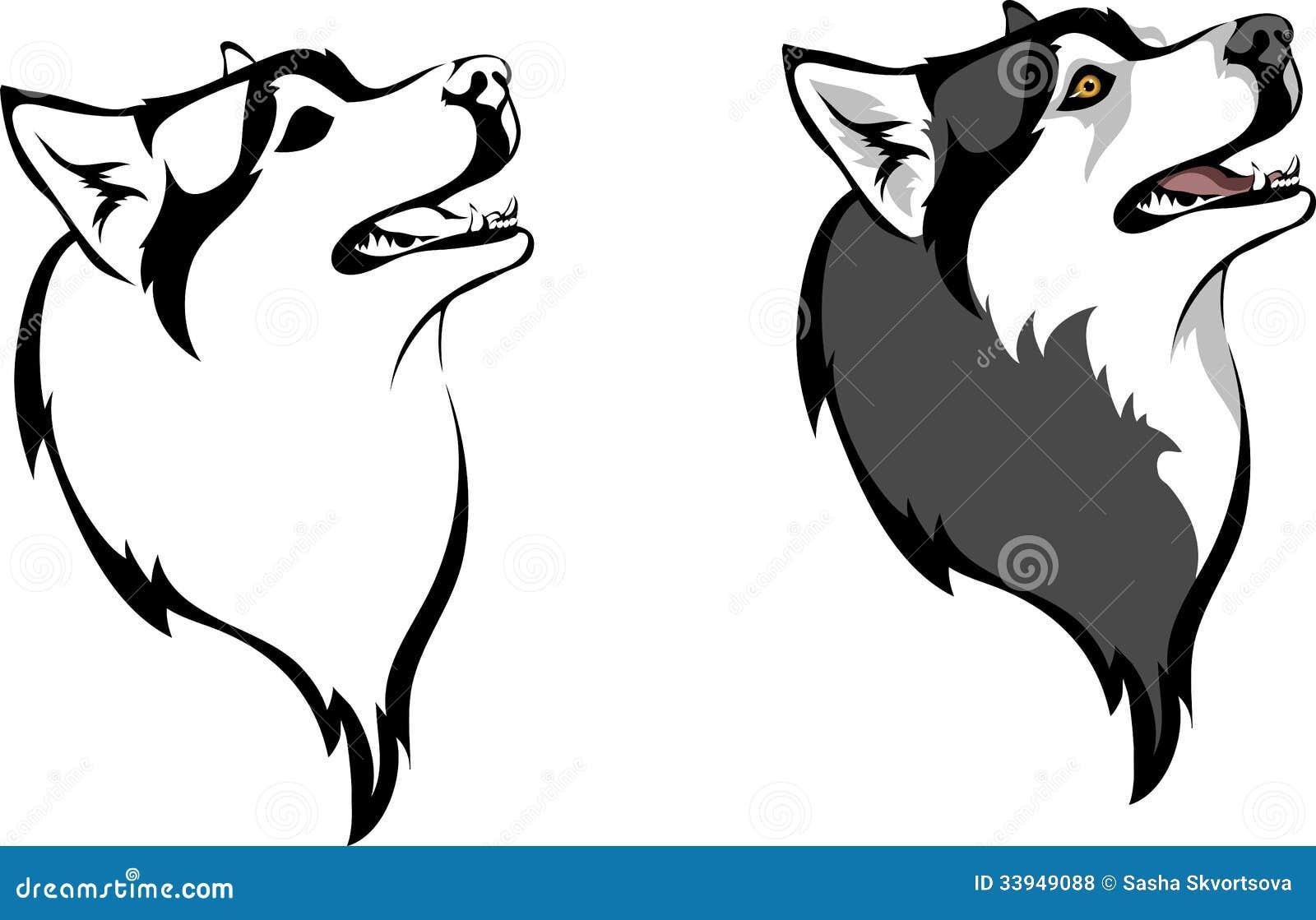 how to draw a husky head