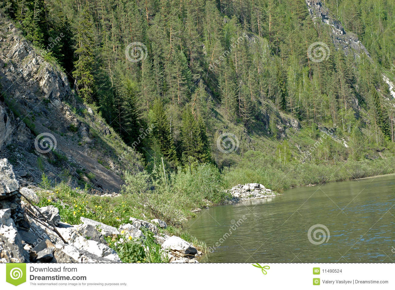 Siberian mountain river Mana