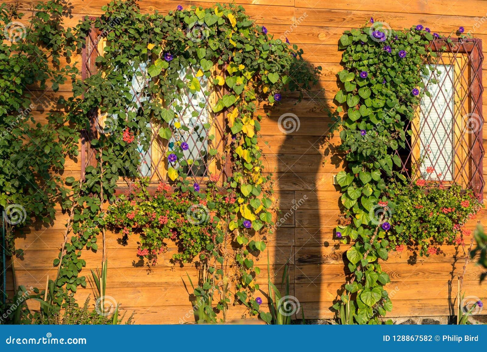 SIBIEL, TRANSYLVANIA/ROMANIA - 17 DE SETEMBRO: Luz solar o da manhã