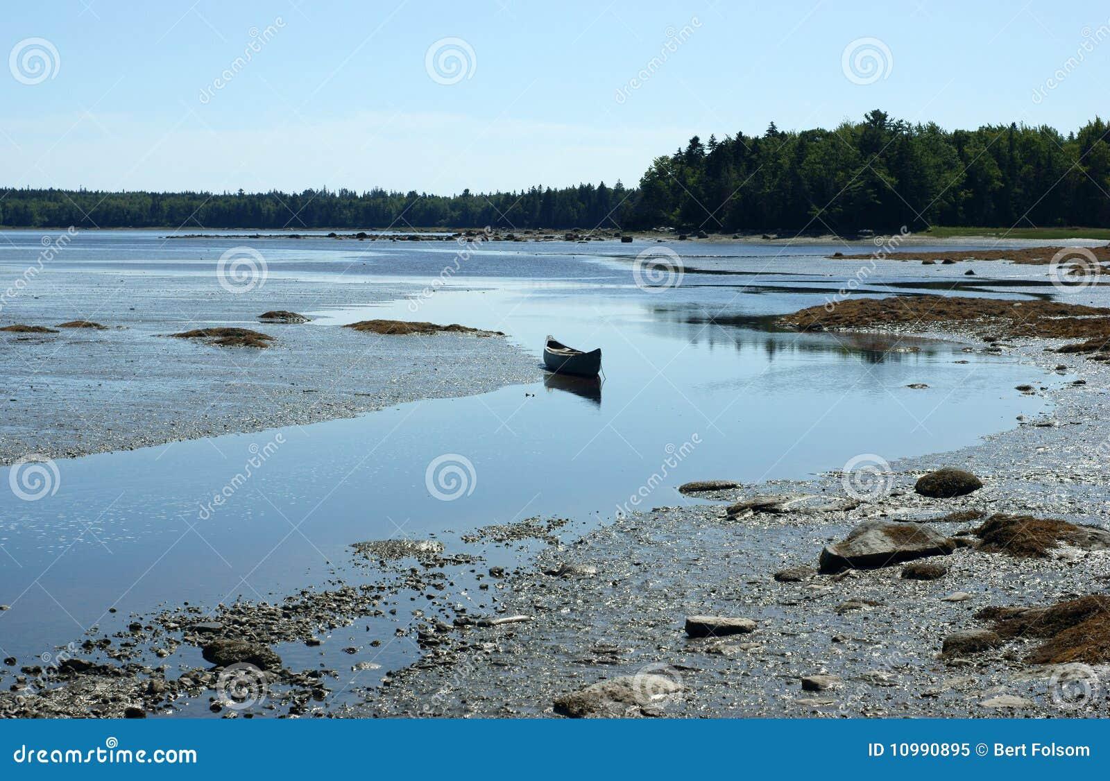 Sich hin- und herbewegendes Kanu nahe Muschelebenen