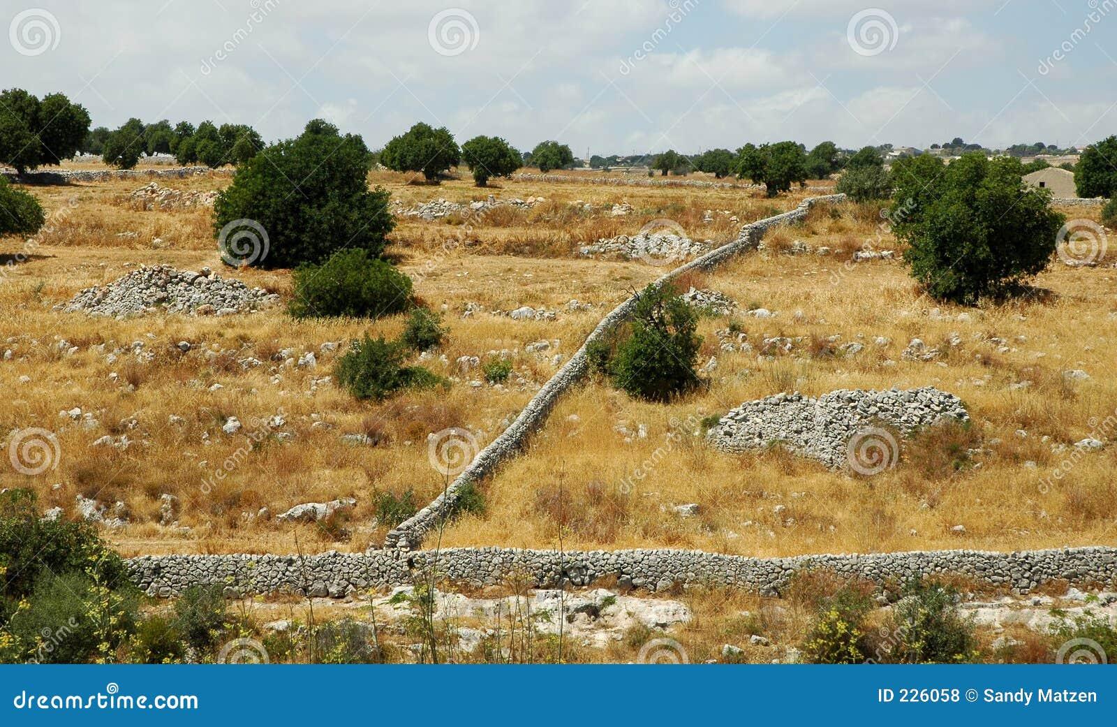 Sicilian Landscape1