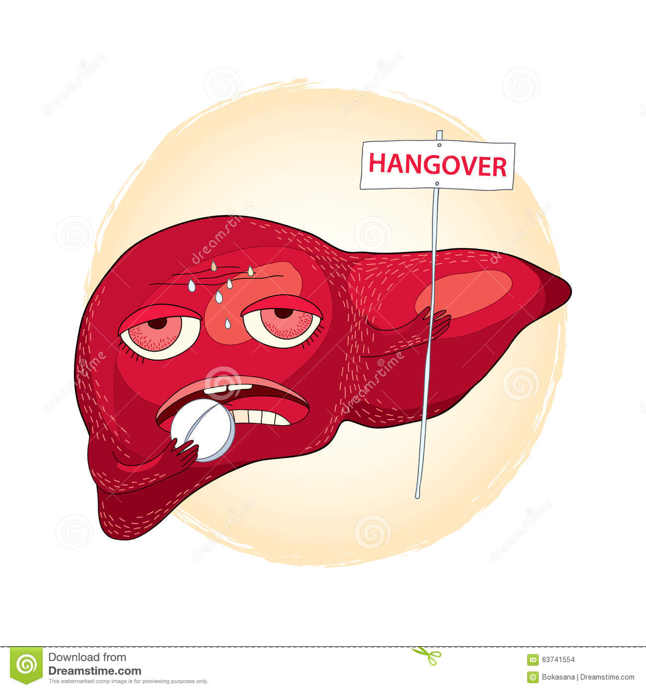 Drinking Alcohol Liver Enzymes