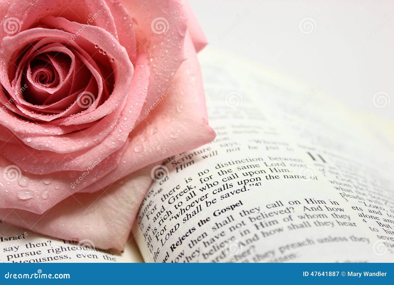 Sida av en öppen bibelsida