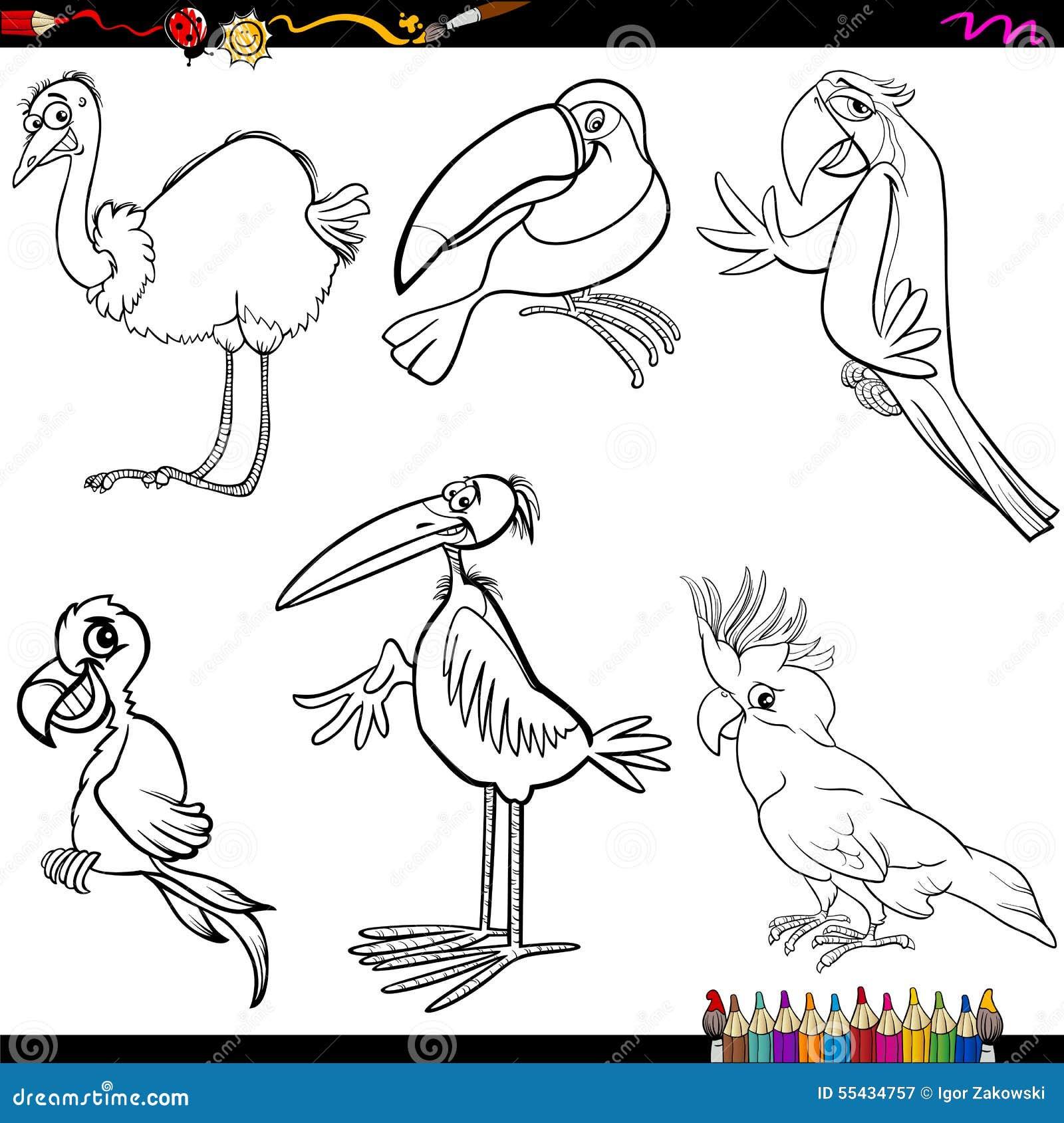 Sida för fågeltecknad filmfärgläggning