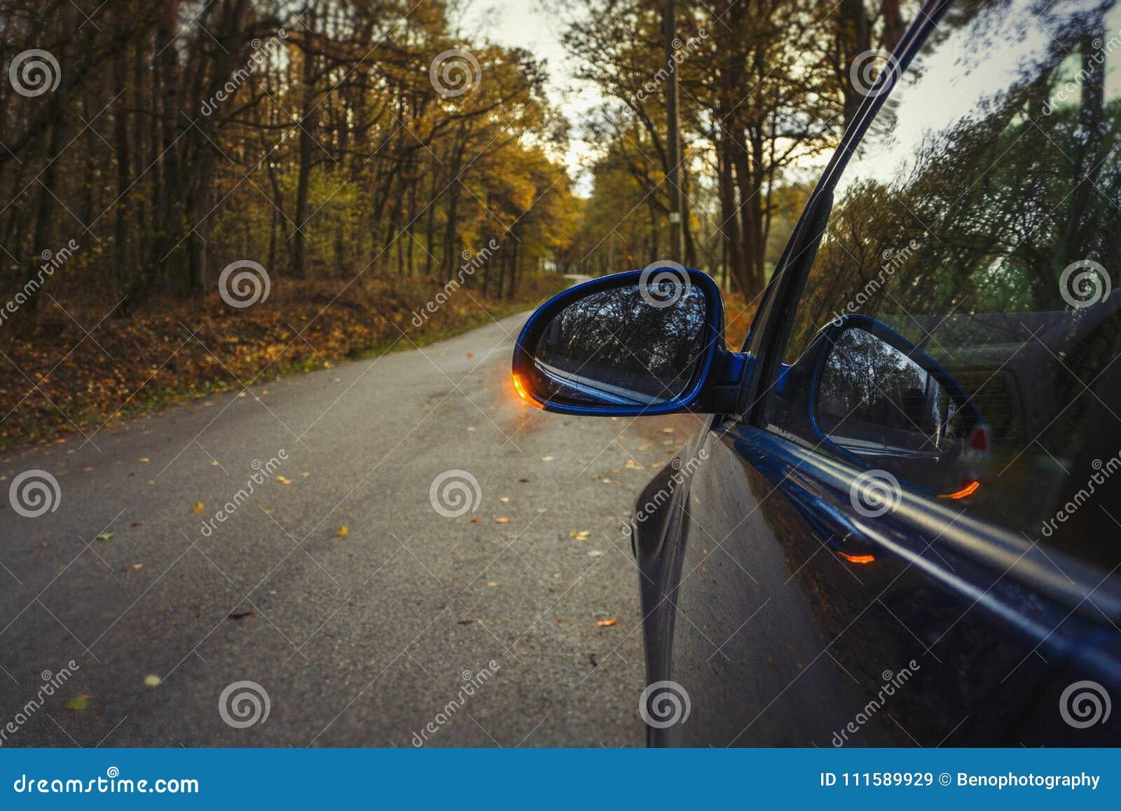 Side Mirror Turn Signal  Turn Indicator On The Mirror Left