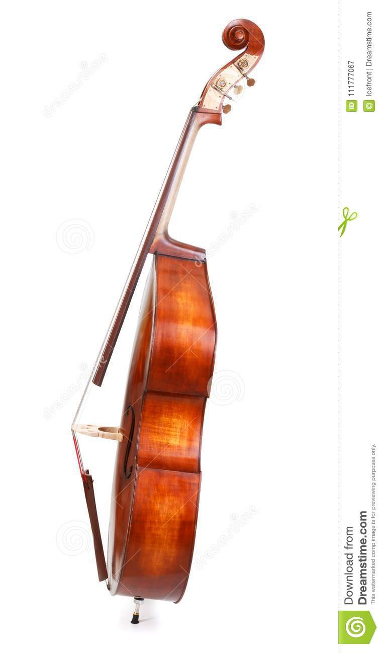 Side view of a double bass