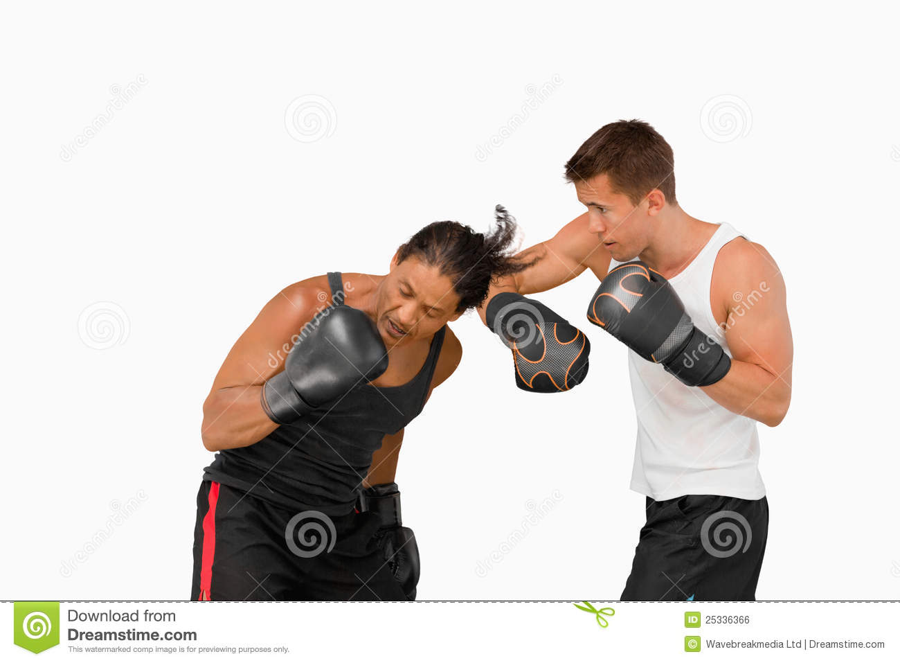 Side view of two fighting boxers