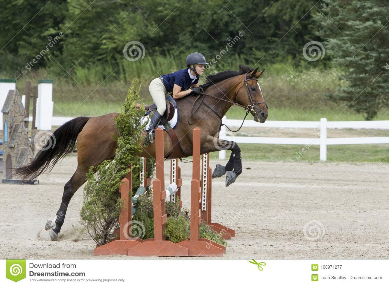 123 Oxer Jump Photos Free Royalty Free Stock Photos From Dreamstime