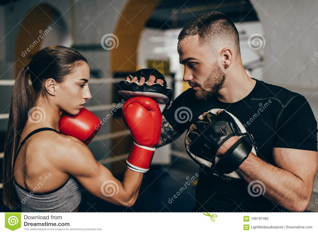 Box stock photo  Image of sport, european, fight, sporty