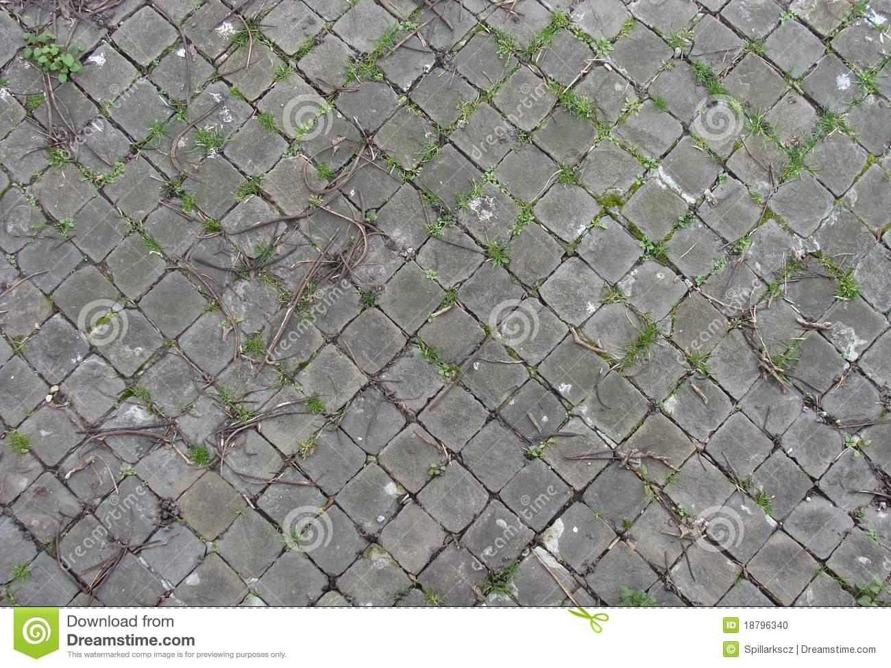 Sidewalk near harbor with square tiles