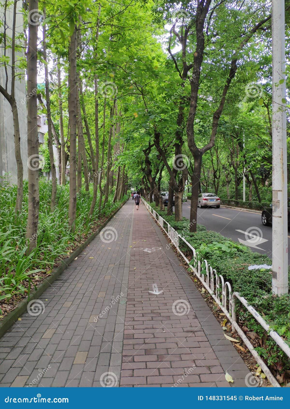 Sidewalk in OCT, Shenzhen, China