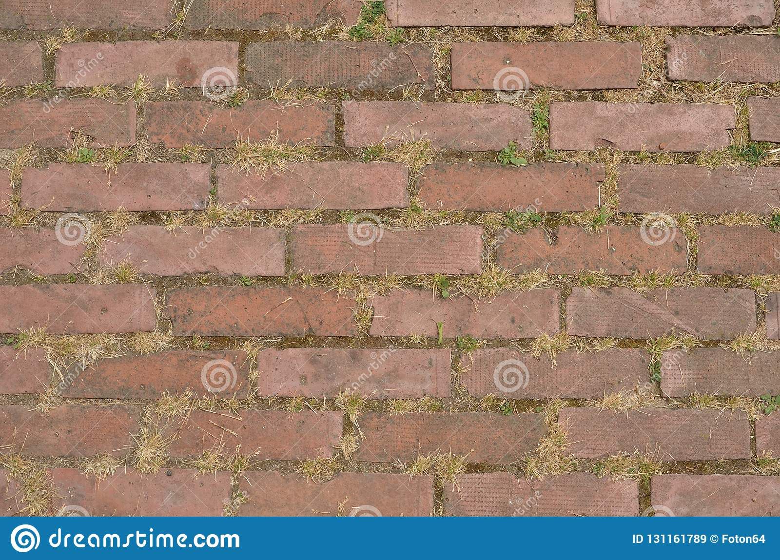 Sidewalk pavement made of bricks