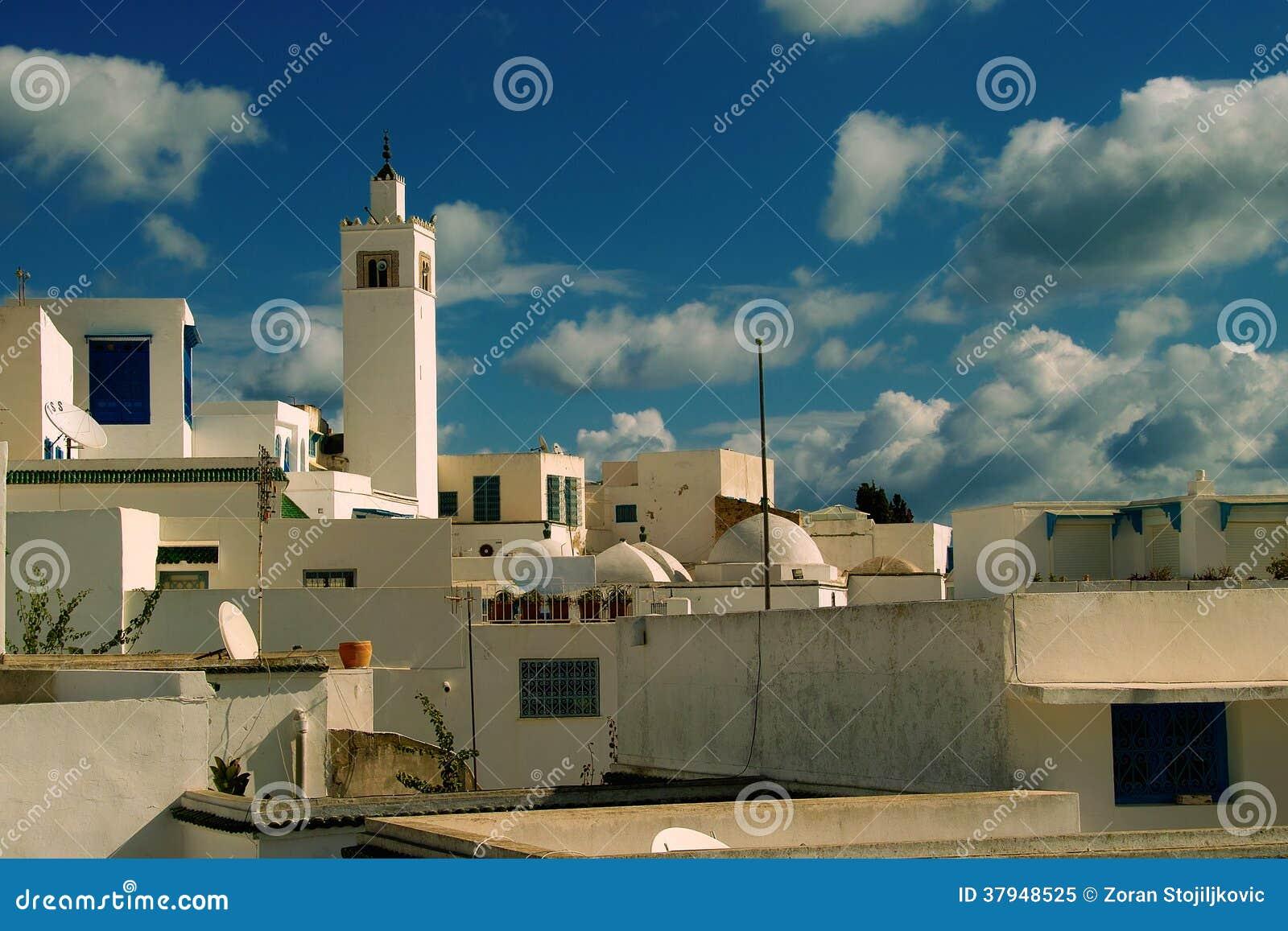 Sidi bou Said/blue and white village