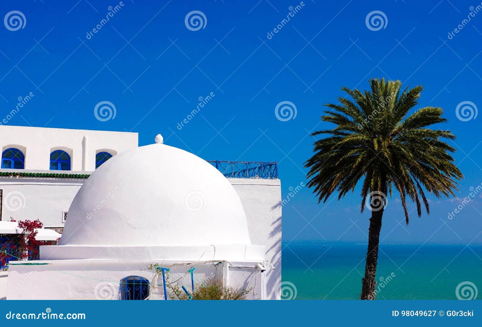 Sidi Bou Said - Mediterranean Sea and Palm Tree