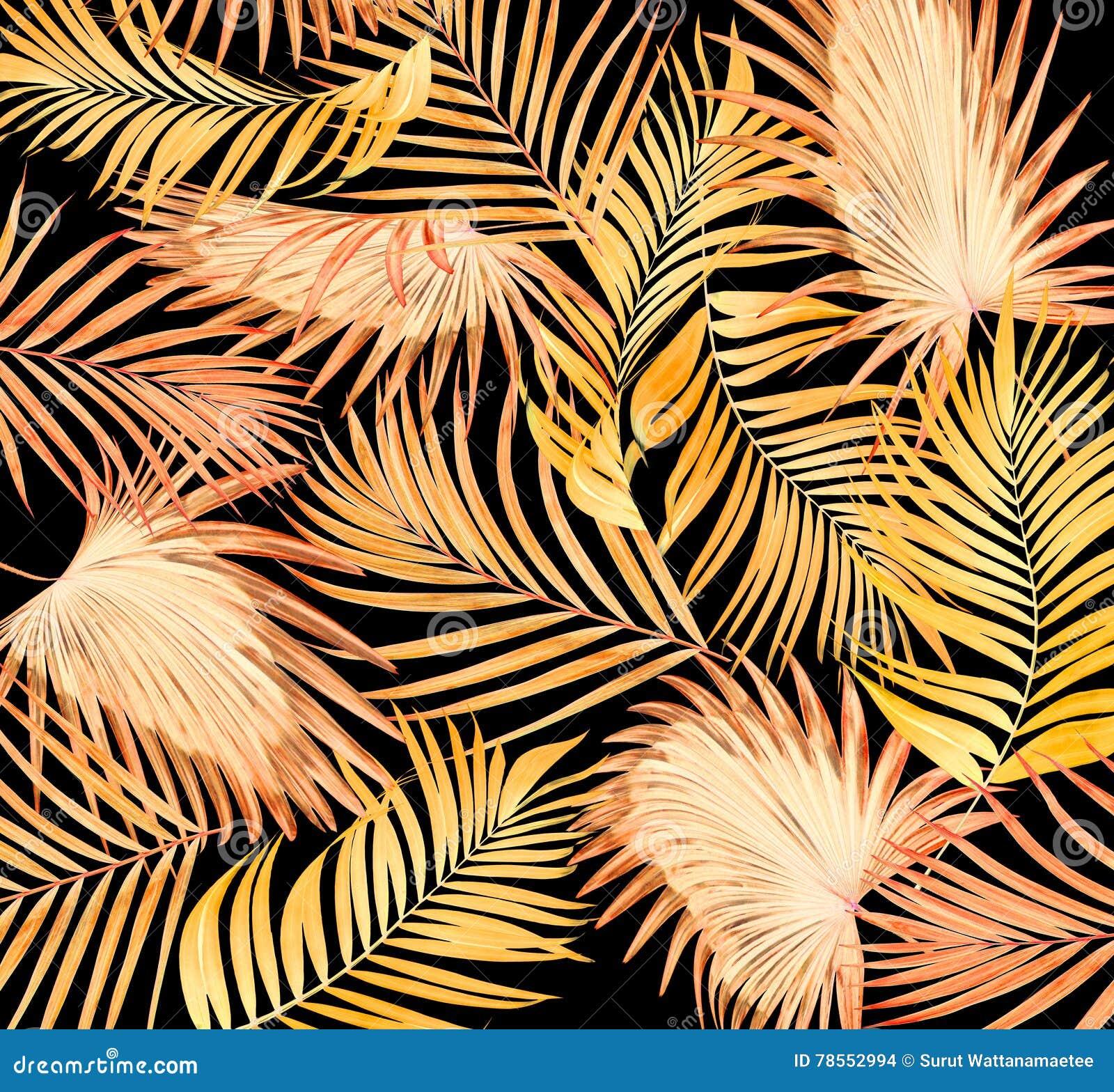 Sidor av palmträdet på svart