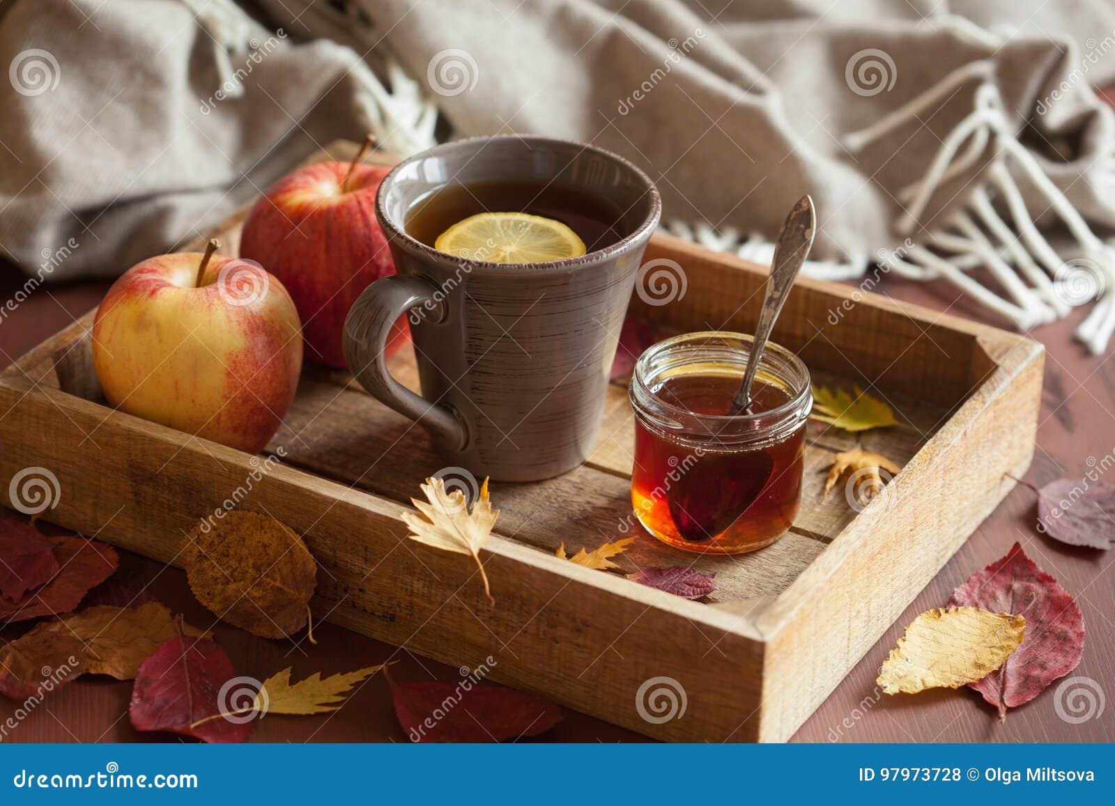 Sidor för höst för halsduk för drink för varmt citronhonungte värmehemtrevliga