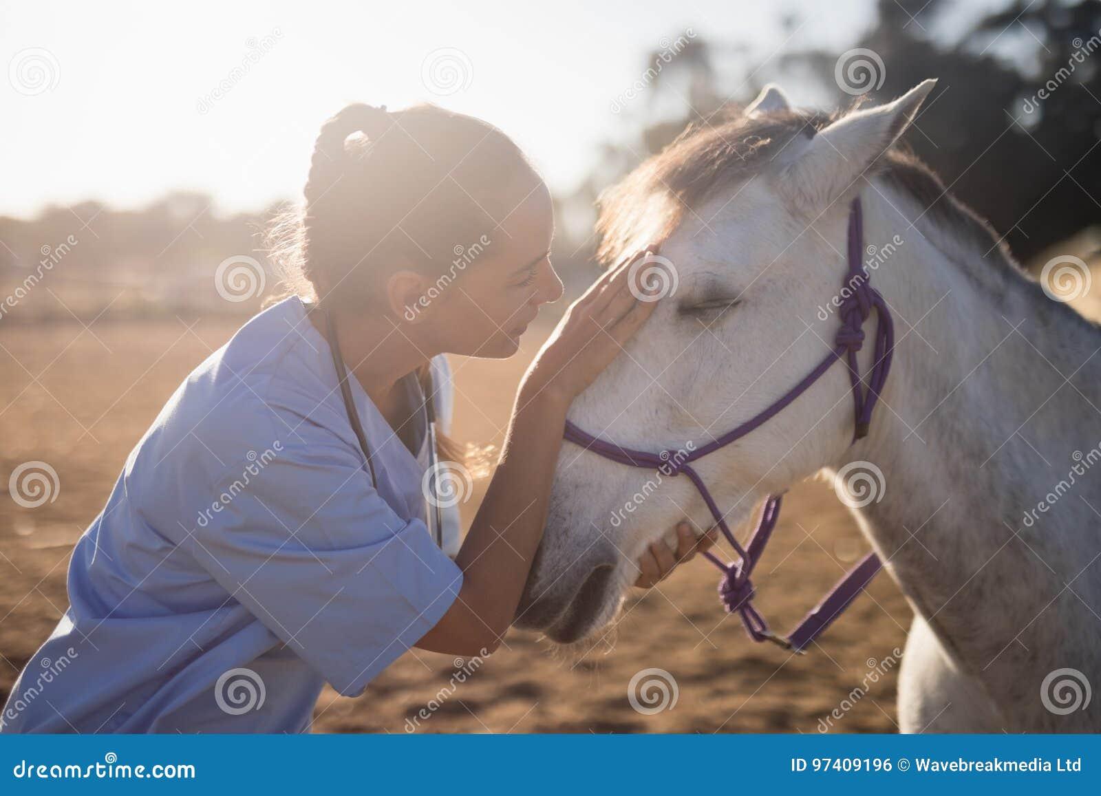 Sidosikt av den kvinnliga veterinären som slår hästen