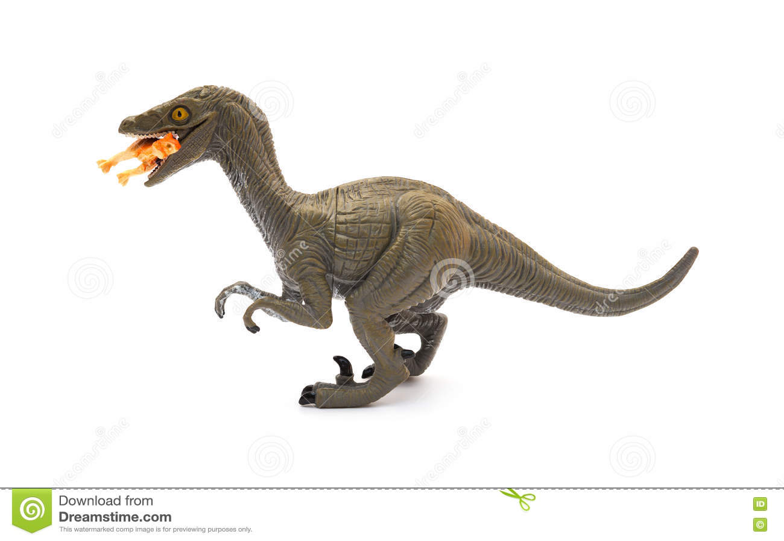 Sidosikt Deinonychus som biter en mindre dinosaurie på vit bakgrund
