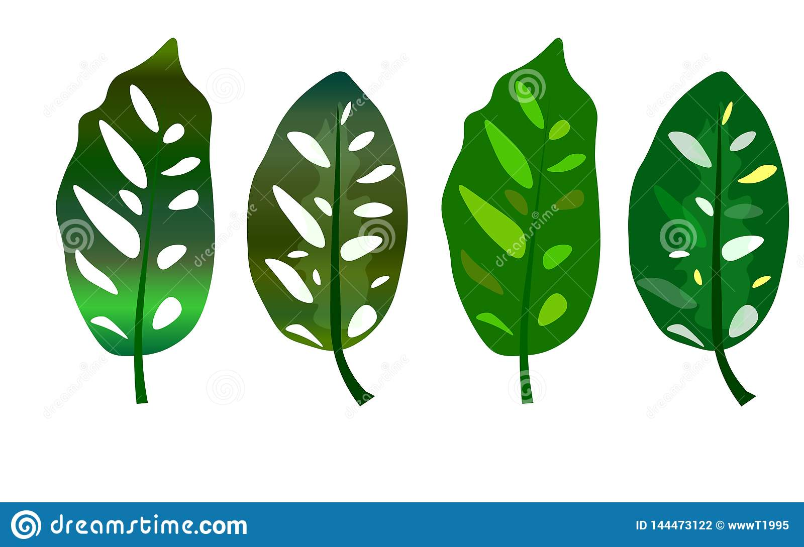 Sieć Tropikalni zieleń liście odizolowywający na białym tle