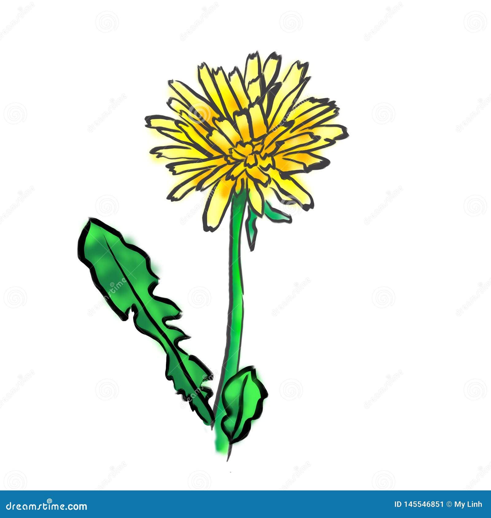 Sieci ikony, kwiatu wektor, dandelion