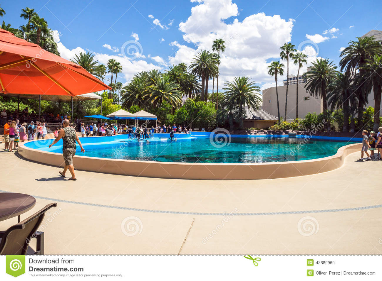 download siegfried and roy secret garden and dolphin habitat editorial stock image image of family - Siegfried Roys Secret Garden And Dolphin Habitat