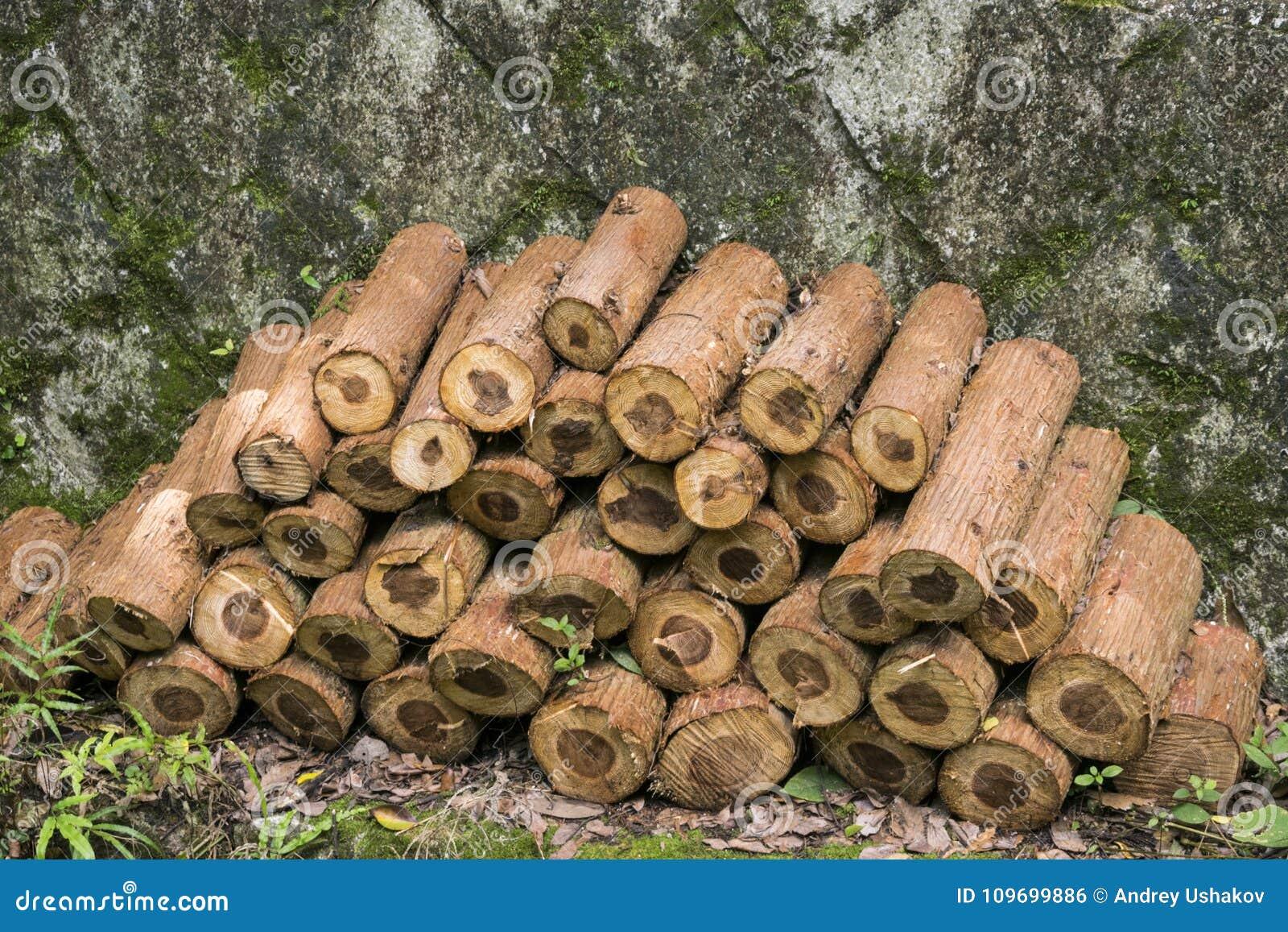 Siekający pożarniczego stosu przygotowany zima drewno
