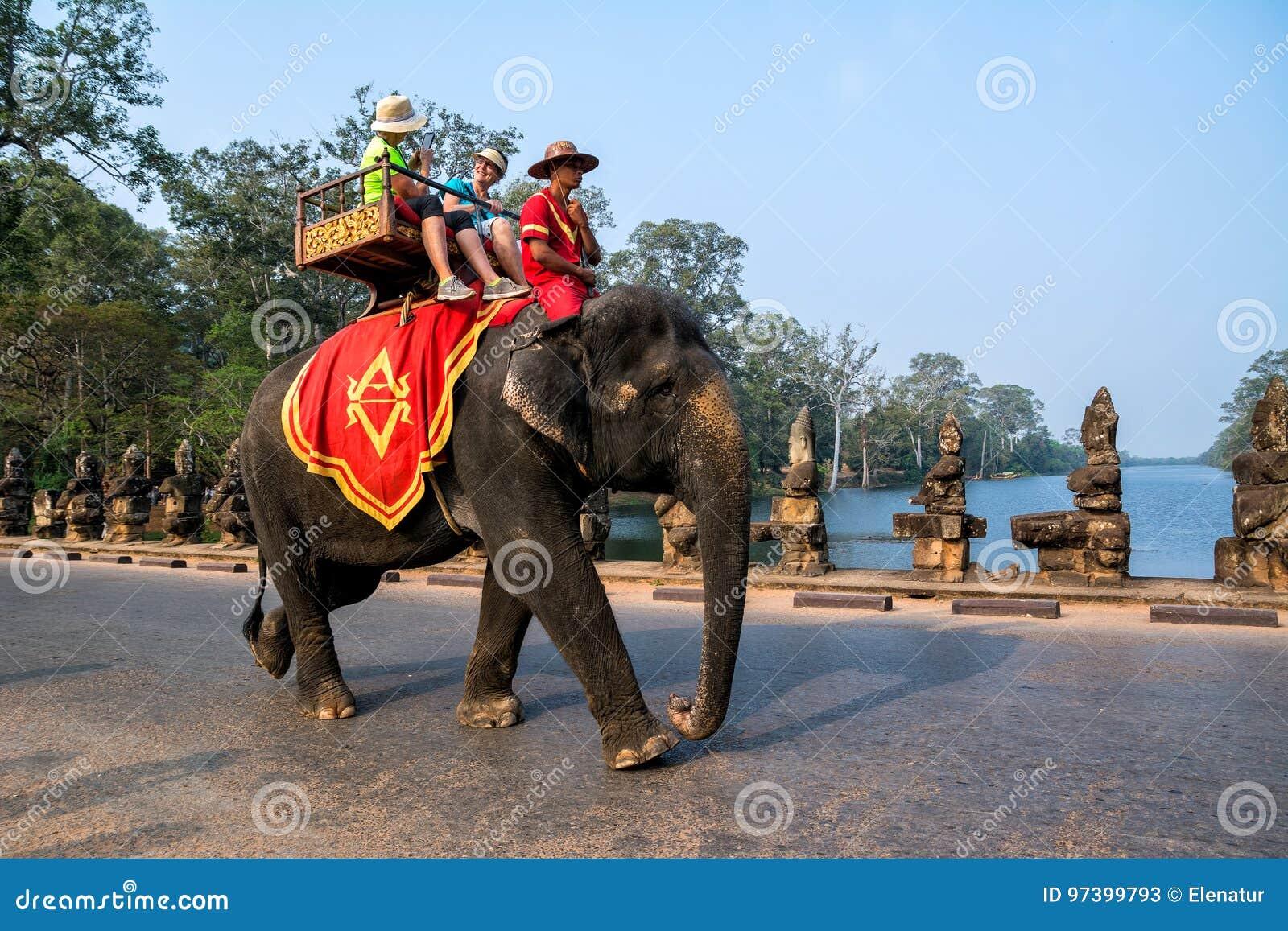 SIEM PRZEPROWADZAJĄ ŻNIWA, KAMBODŻA, MARZEC - 8, 2017: Słonia przewożenia touris