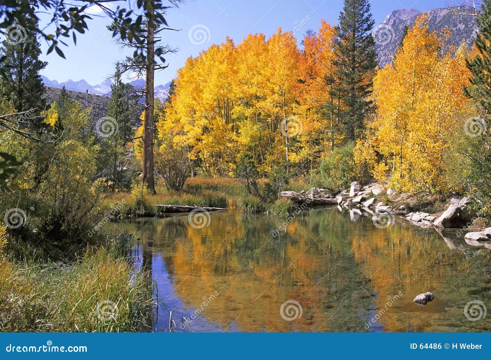 Sierra couleurs