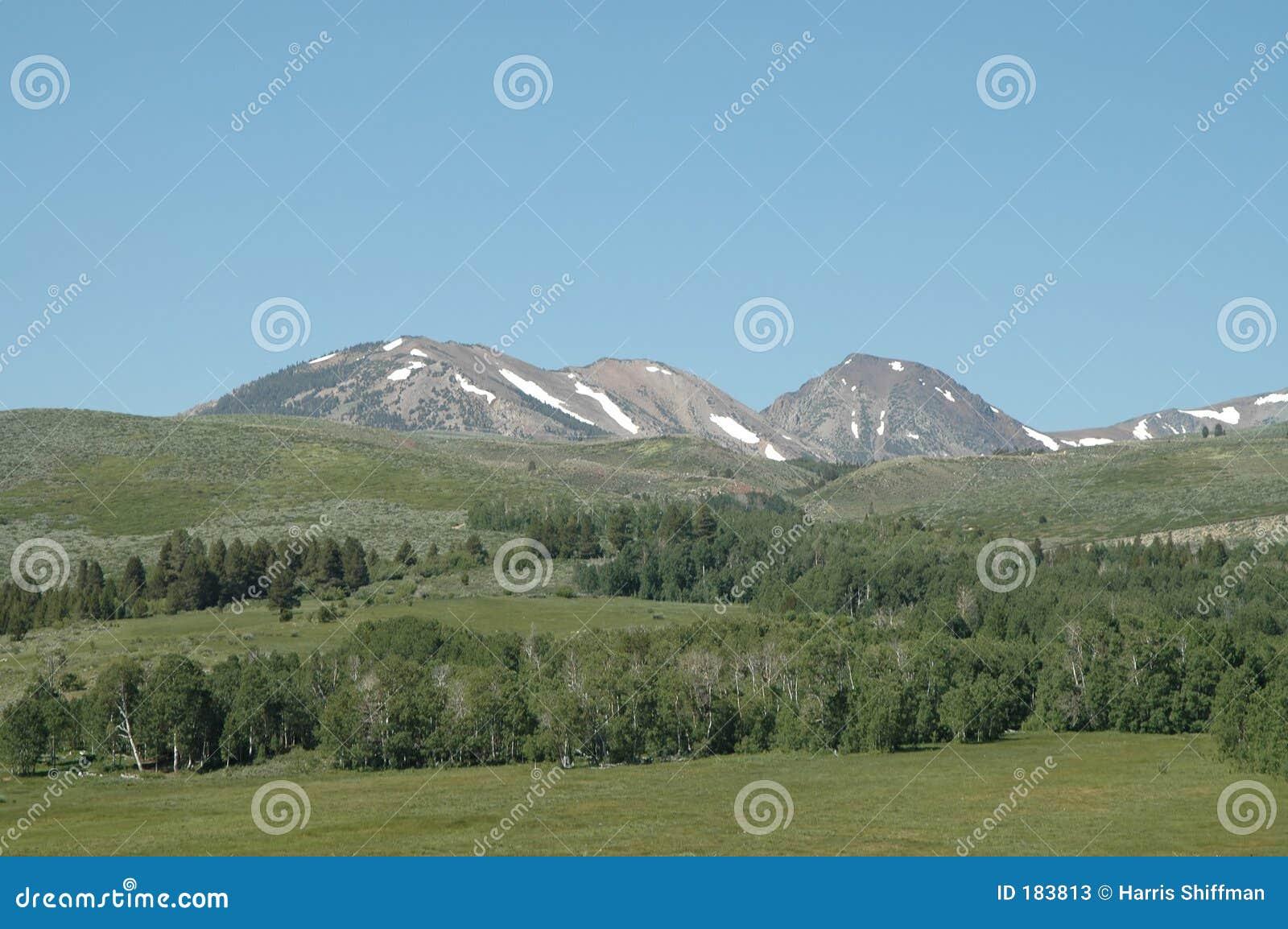 Sierra neige