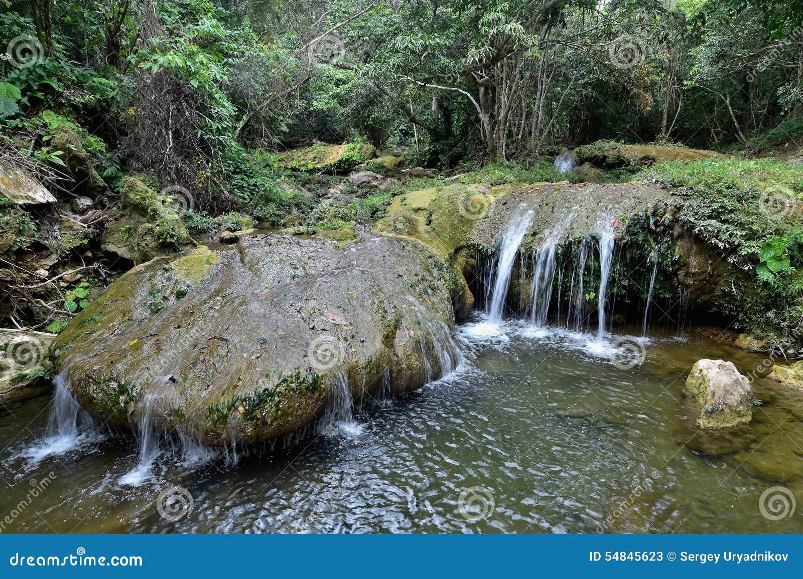 Sierra Rosario Biosphere Reserve, Pinar del Rio