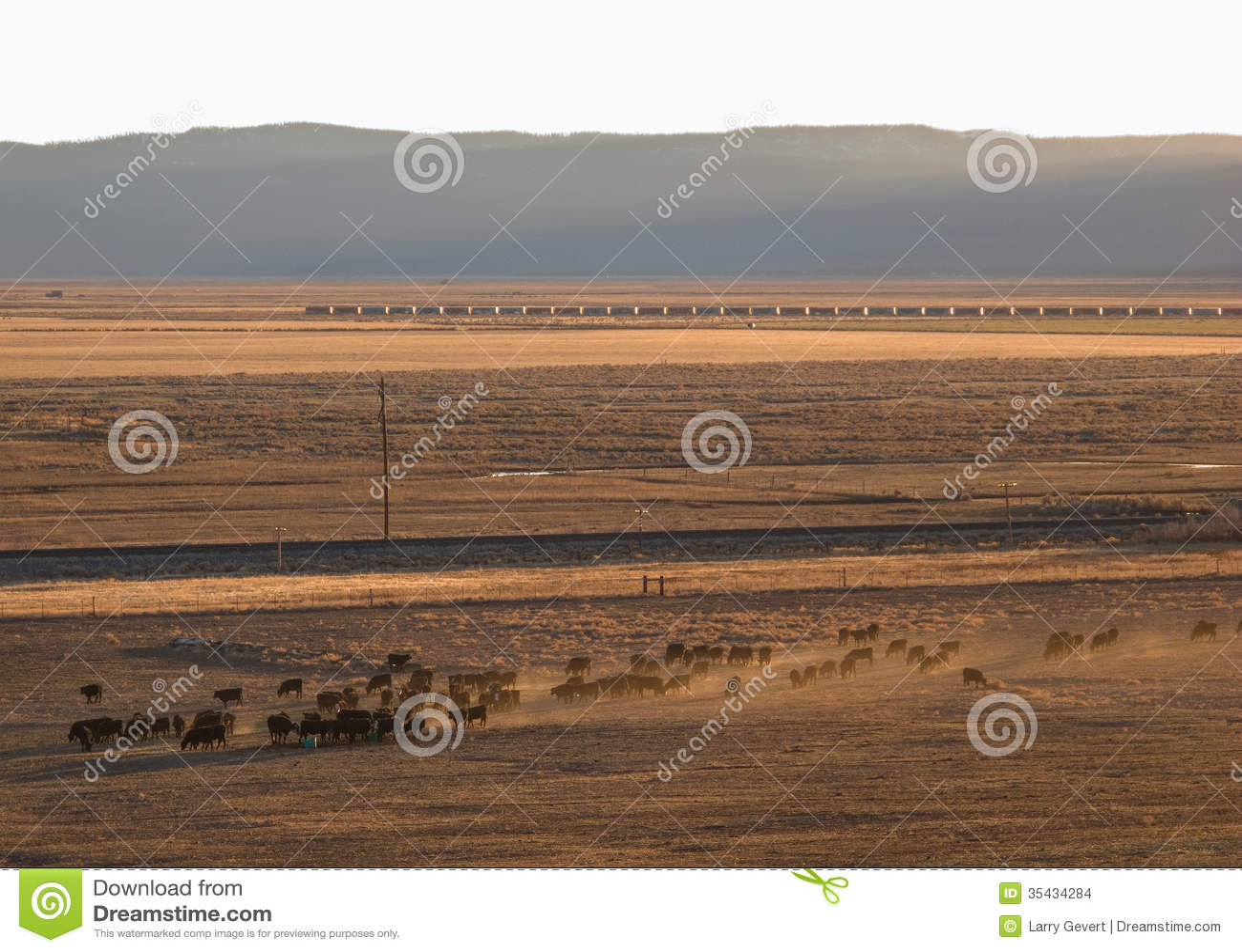 Sierra valley ranch scene stock images image 35434284 for Sierra valley