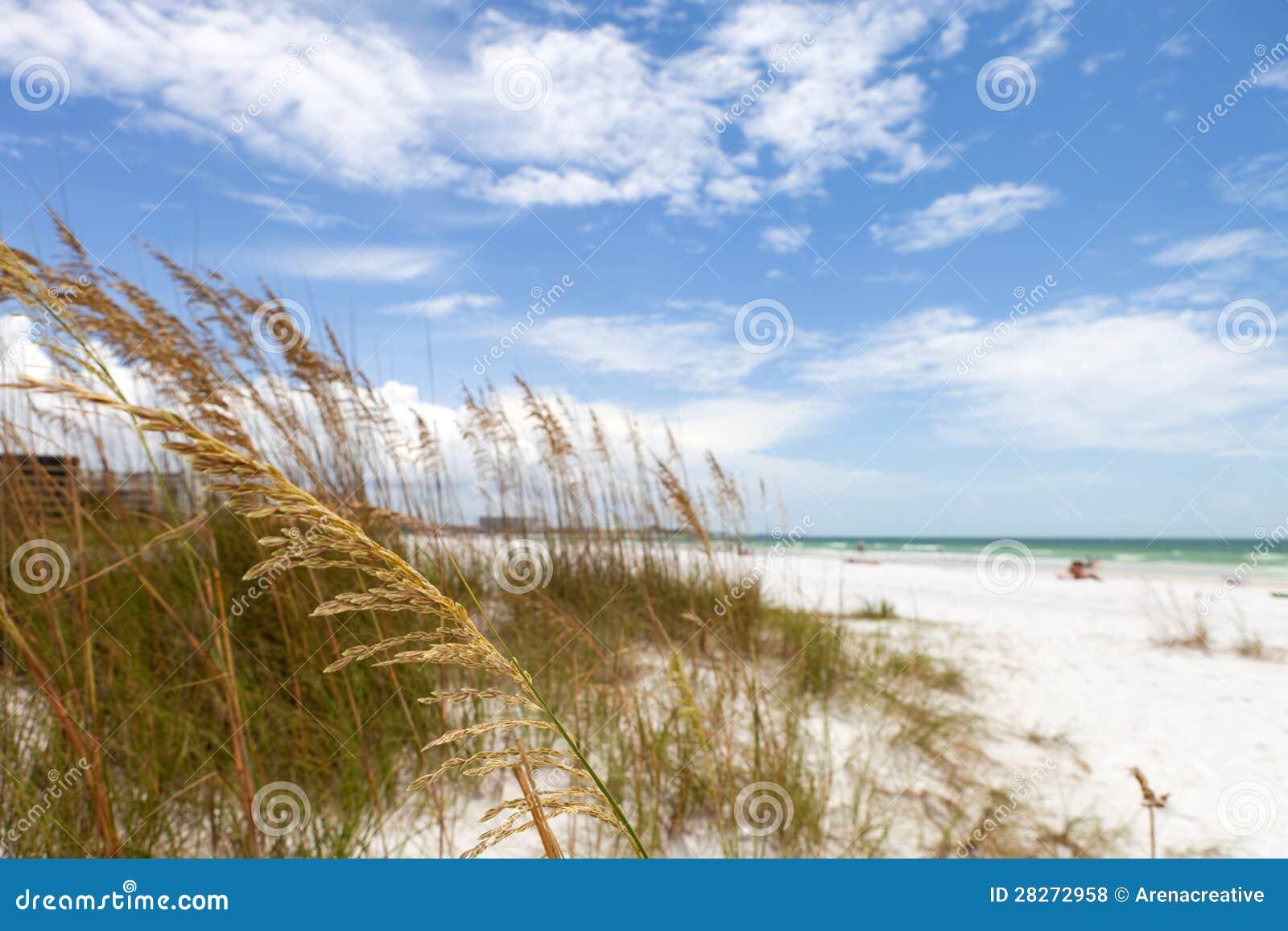 Siesta Key Beach Sarasota Florida Royalty Free Stock