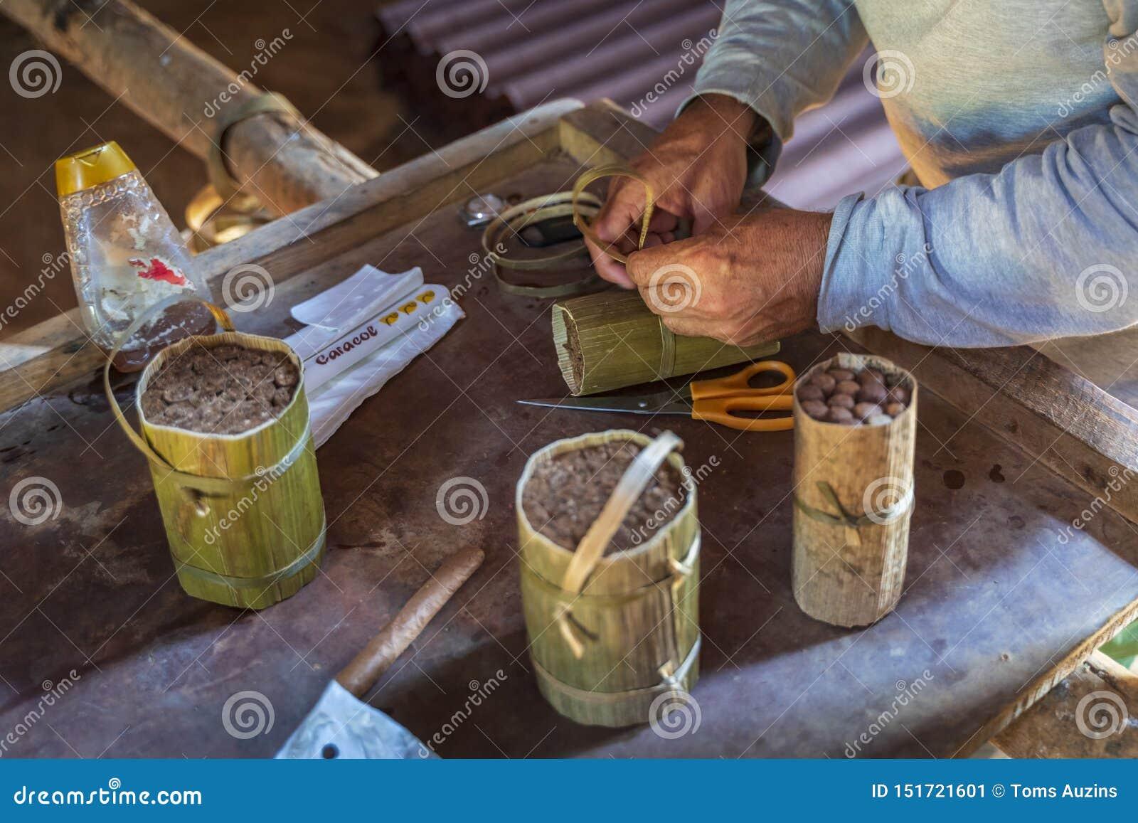 Sigarenvoorbereiding, Vinales, Unesco, Pinar del Rio Province, Cuba, de Antillen, de Caraïben, Midden-Amerika