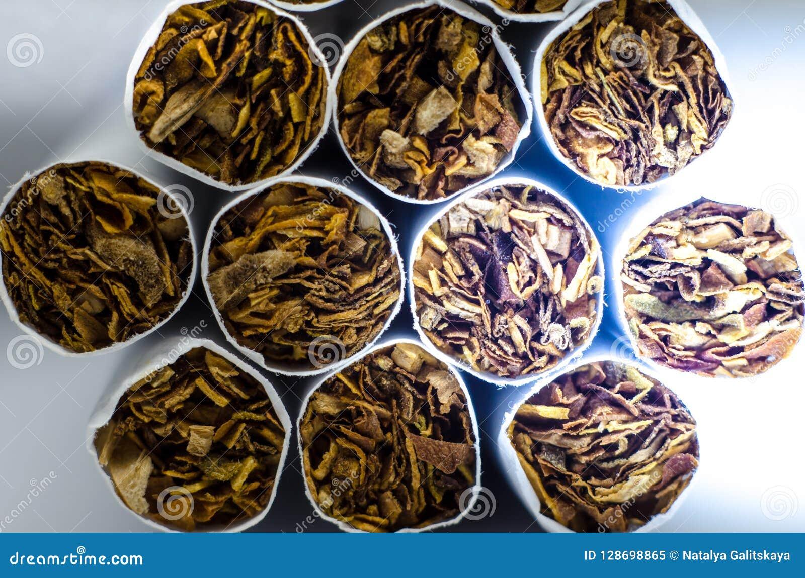 Sigarette bianche Lato del tabacco Cenni storici a macroistruzione
