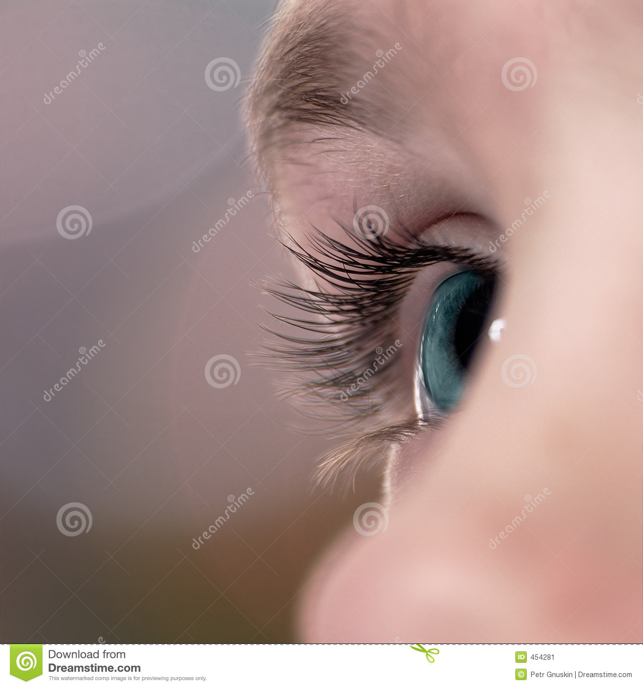 Download Sight stock image. Image of glare, gaze, closeup, iris - 454281