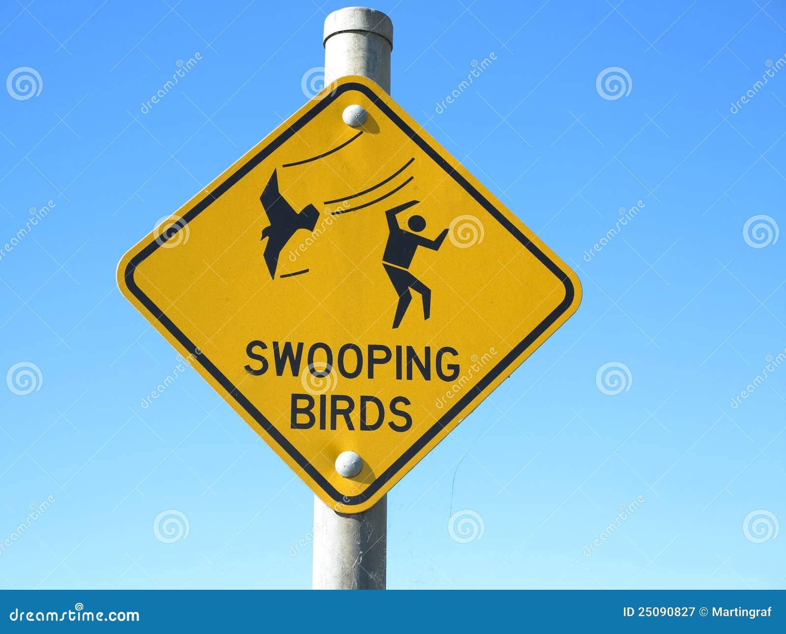 Signal d avertissement d oiseaux